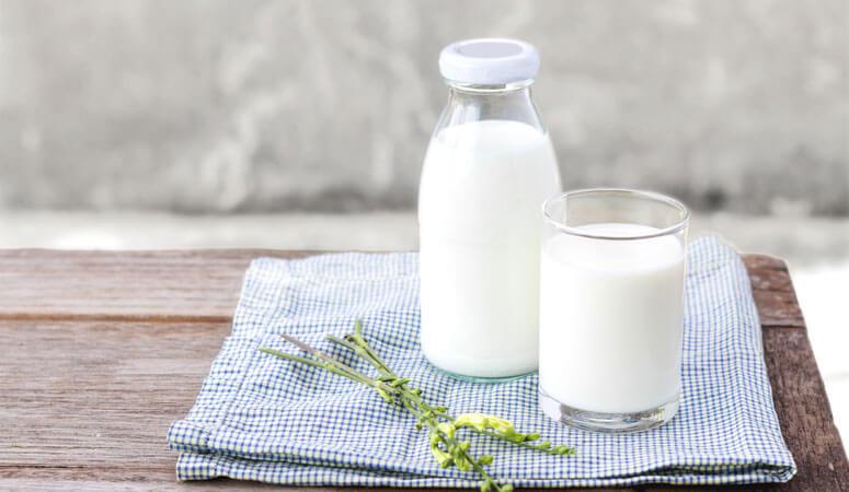 Cách nấu sữa óc chó với sữa tươi