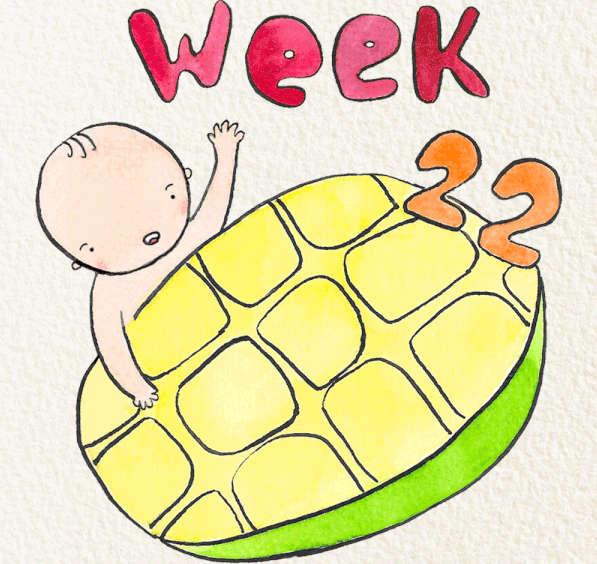 Kinh nghiệm mang thai lần đầu tuần 22