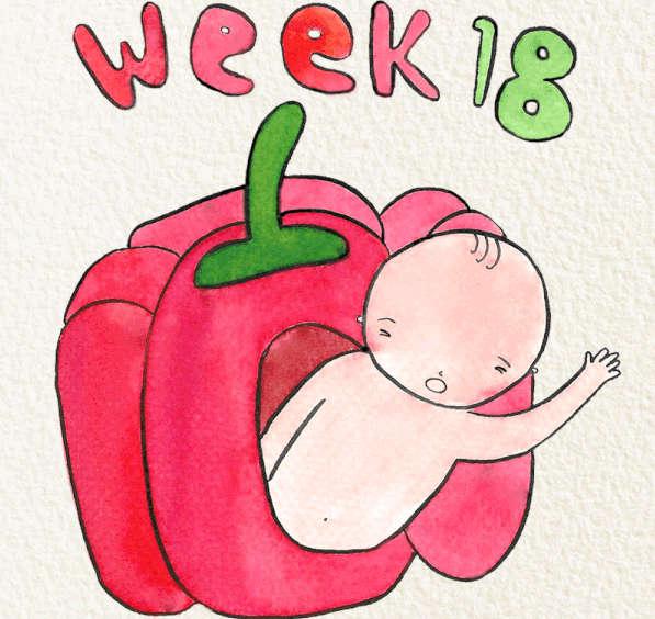 Kinh nghiệm mang thai tuần 18